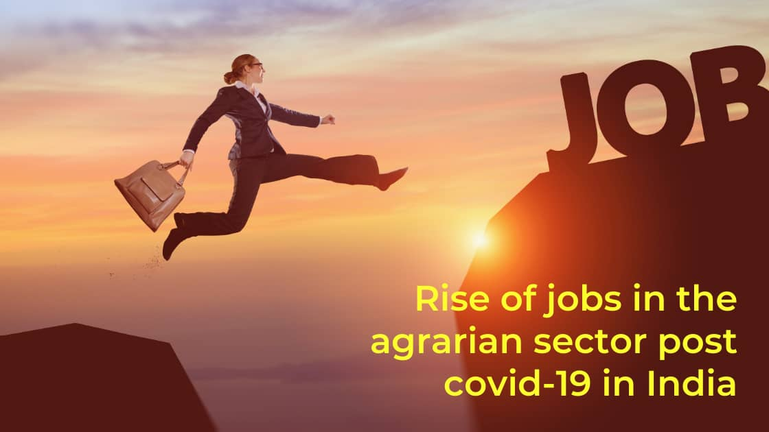Rise of Jobs in the Agrarian Sector Post COVID-19 in India