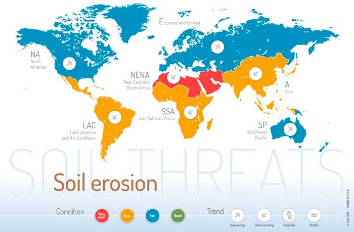 Stop soil erosion, Save our future.