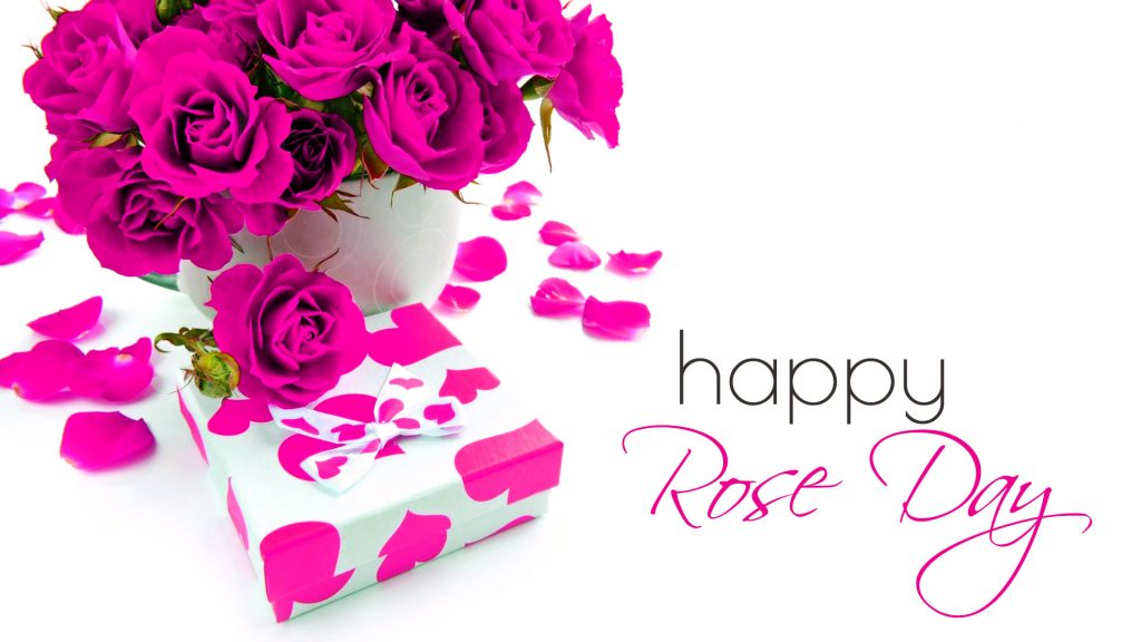 7th February - Rose Day - Days of the Valentines Week 2021