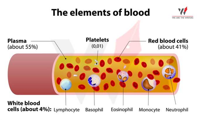 Composition of Blood Functions of Blood