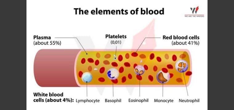BLOOD BANK: THE LIFE SAVIOR